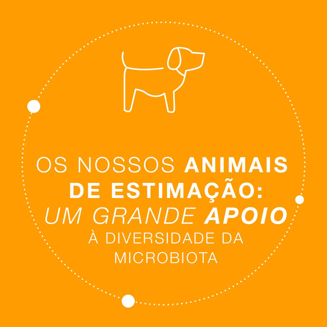 Sabia que o cão é o melhor amigo da sua microbiota?